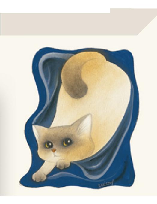 Chiudipacco Gatteria - Coperta blu-0