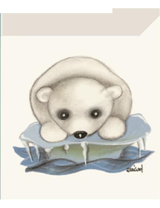 Chiudipacco Gatteria - Orsetto ghiaccio-0