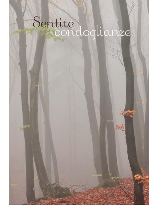 Biglietto di condoglianze con la foto di un bosco autunnale