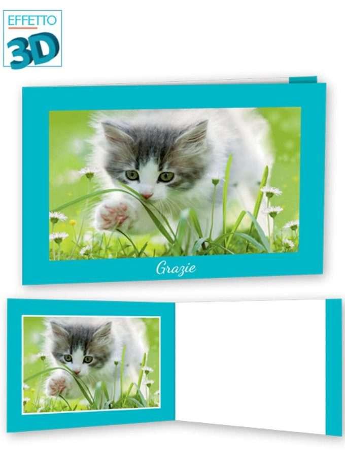 Meow grazie-0