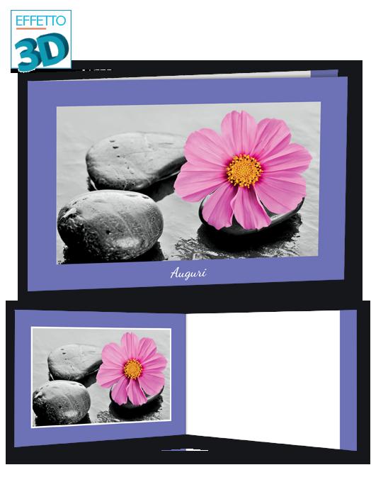 Auguri e fiore rosa-0