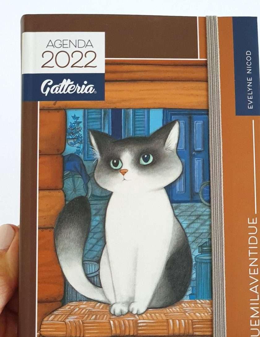 Agenda gatti 2022 giornaliera con copertina marrone - Gatteria