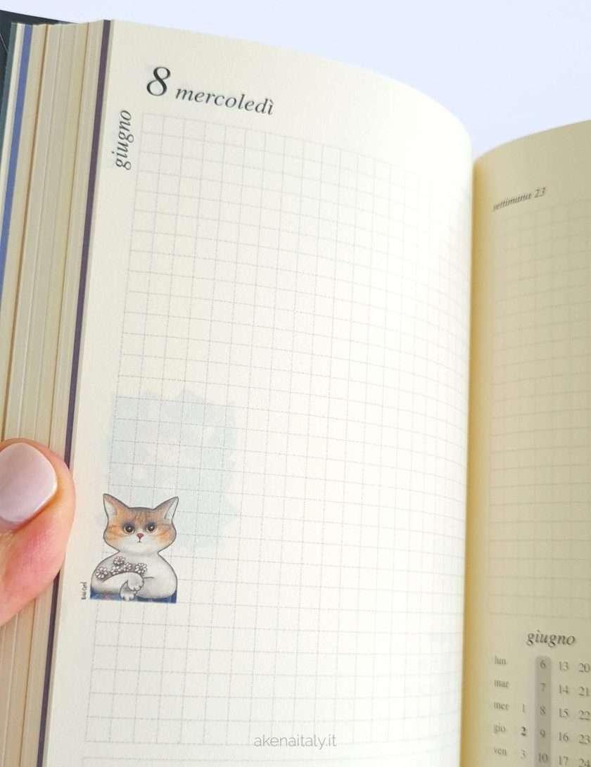 Agenda gatti 2022 giornaliera dettaglio interno - Gatteria